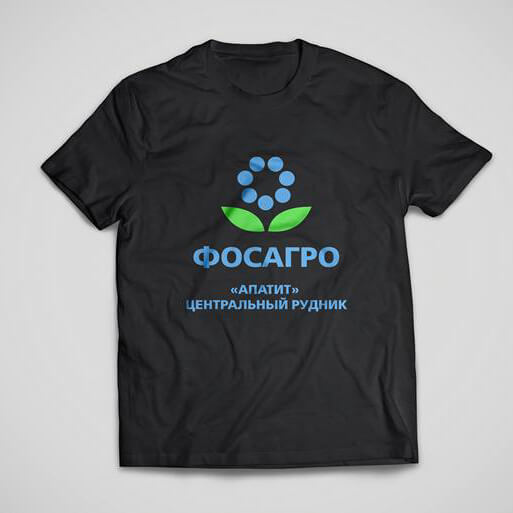 Футболки с нанесением логотипа